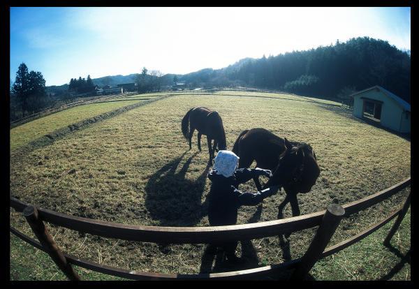 『『『『『PC馬が来た』の画像』の画像』の画像』の画像』の画像