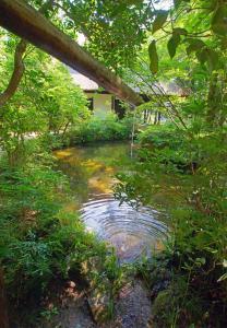 『『えがく水の輪 文庫池』の画像』の画像